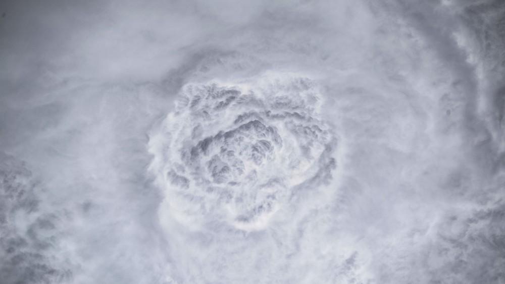 Облачная Роза